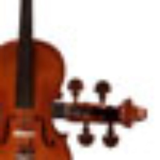 Timothy Judd, Suzuki Violin Lessons – Suzuki Violin Lessons